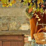 Ароматы Италии: изысканные и утонченные итальянские вина