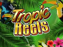 Автомат Тропические Барабаны